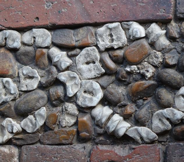 fossil-walkways.jpg